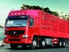 howo-cargo-truck-8x4-with-high-cabin
